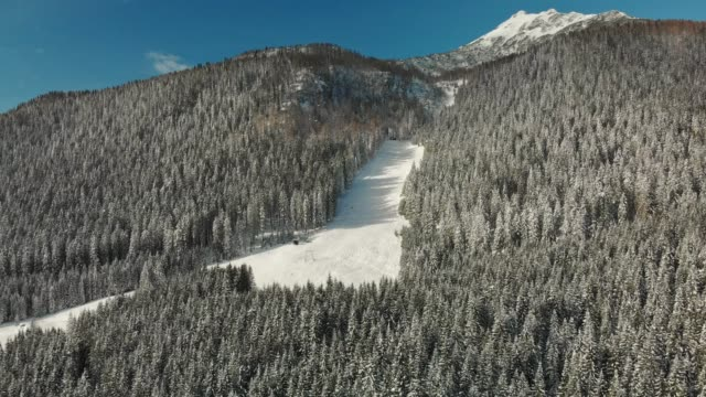 small ski slope in the middle of a snowy forest - steep stock videos & royalty-free footage