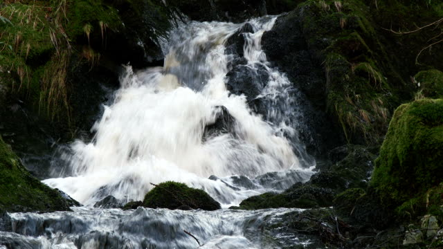 Small stream and waterfall in rural Dumfries and Galloway, Scotland
