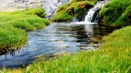 Small stream in Altai