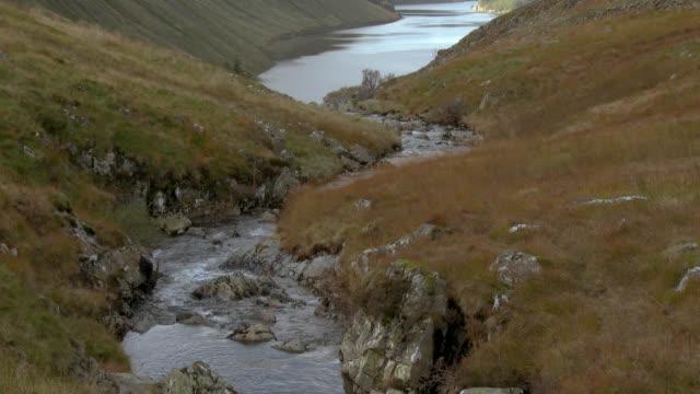 vídeos y material grabado en eventos de stock de riachuelo en la región de scottish borders de escocia - johnfscott