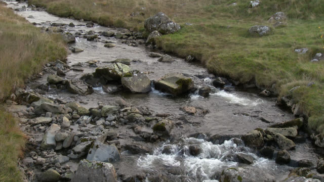 small stream in the scottish borders region of scotland - johnfscott stock videos and b-roll footage
