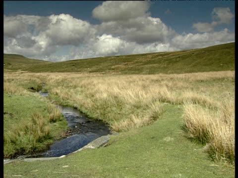 vídeos y material grabado en eventos de stock de small stream running though rough grass moorland heavy white and grey clouds in blue sky yorkshire moors - yorkshire