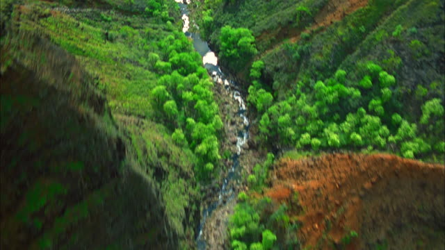 a small stream winds through a tropical canyon. available in hd. - black canyon stock videos & royalty-free footage