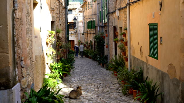 small street in mallorca with cat - balearic islands stock videos and b-roll footage