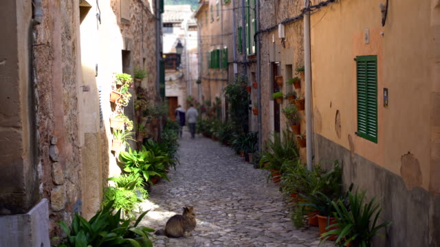 small street in valldemosa with cat - alley stock videos & royalty-free footage