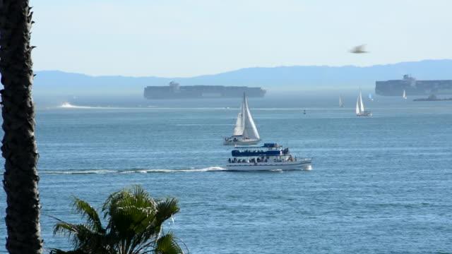 vídeos y material grabado en eventos de stock de small tour boat offshore moving past sailboats, a cargo ship and oil tanker moored - puerto de los angeles