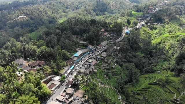 small town next to rice terraces - indonesia video stock e b–roll