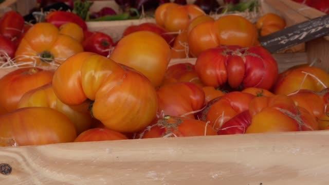 vidéos et rushes de petit marché de légumes - tomate