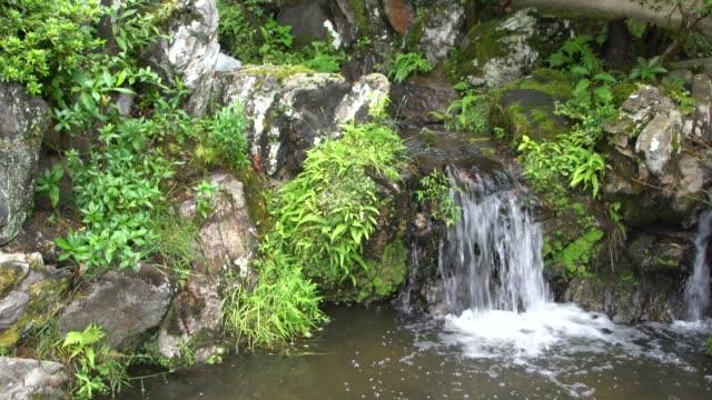 a small waterfall and a lake in isuien garden in nara, japan - 松の木点の映像素材/bロール