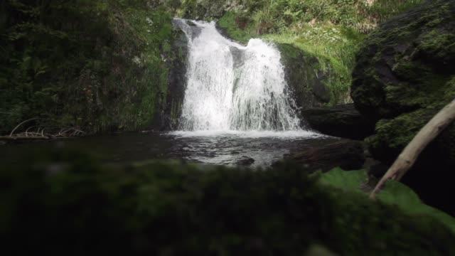 小さな滝の森 - シュバルツバルト点の映像素材/bロール