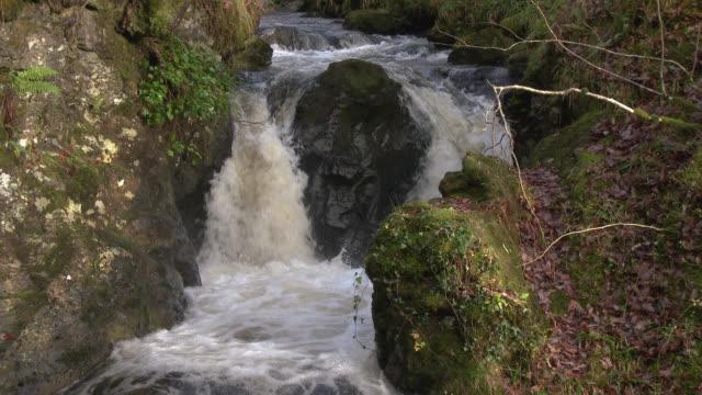 vídeos y material grabado en eventos de stock de pequeña cascada en escocia rural de sur oeste de dumfries y galloway - johnfscott