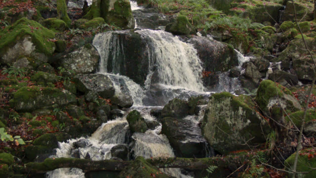 small waterfall in rural scotland - small stock videos & royalty-free footage