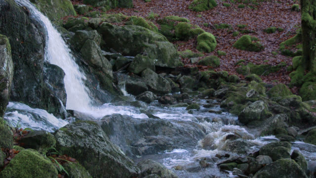 Small waterfall in Scottish woodland during autumn