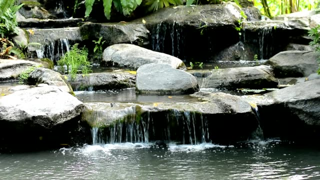 small waterfall in the park - lily stock videos & royalty-free footage