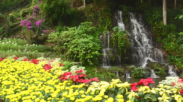 小さな滝 - 整形式庭園点の映像素材/bロール