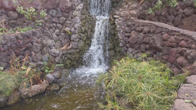 small waterfalls in a fountain with plants and stone walls in tenerife - palace stock videos & royalty-free footage