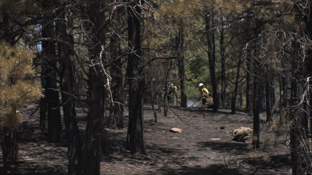 A small wildfire and drought conditions near Boulder Colorado with firefighters and emergency personnel working to protect people and property in the...