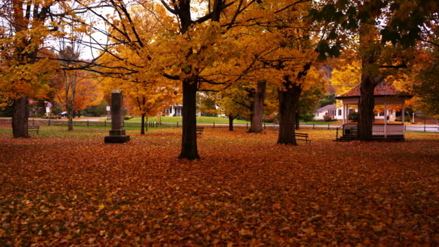 Small-town Vermont park covered with Fall leaves.