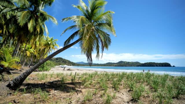 sámara beach, puerto carrillo, guanacaste province, costa rica - puntarenas province stock videos & royalty-free footage