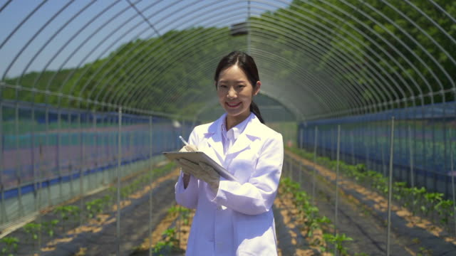 smart farming - researcher looking at camera and smiling with a digital tablet in a greenhouse - 白衣点の映像素材/bロール