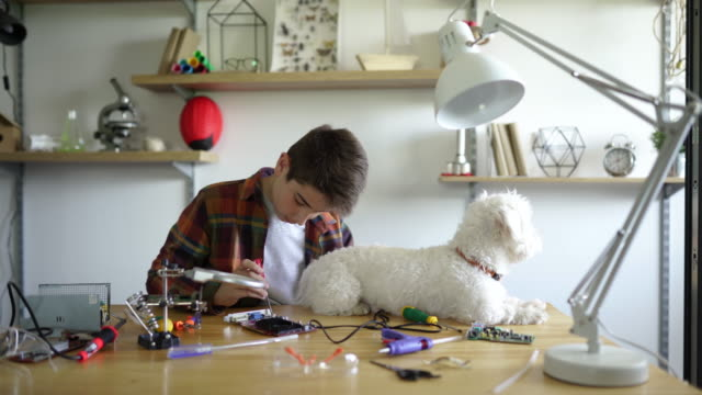 Smart schoolboy using screwdriver for science project and stroking his dog
