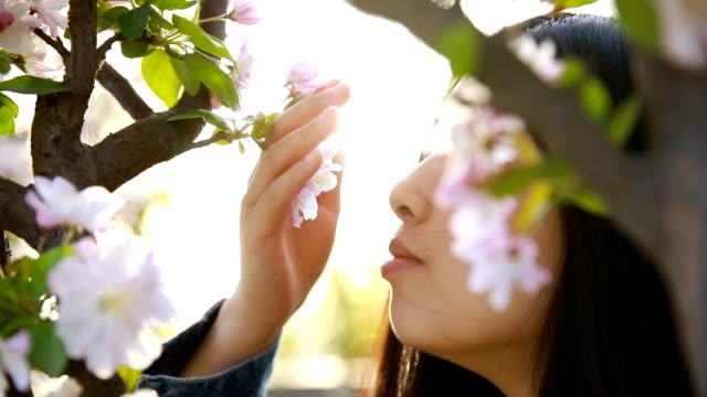 smelling springtime - scented stock videos & royalty-free footage