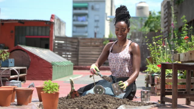 smiling african gardener filling can with soil for planting - pot plant stock videos & royalty-free footage