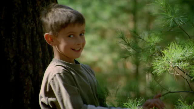stockvideo's en b-roll-footage met smiling boy playing with tree branches and looking at camera - alleen jongens