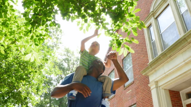 MS LA Smiling boy riding on fathers shoulders reaching up towards leaves on tree during walk in park