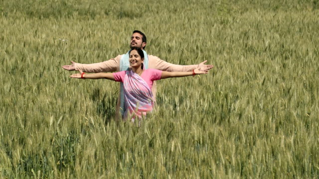 stockvideo's en b-roll-footage met ws cs smiling couple with arms outstretched standing in wheat field - driekwartlengte