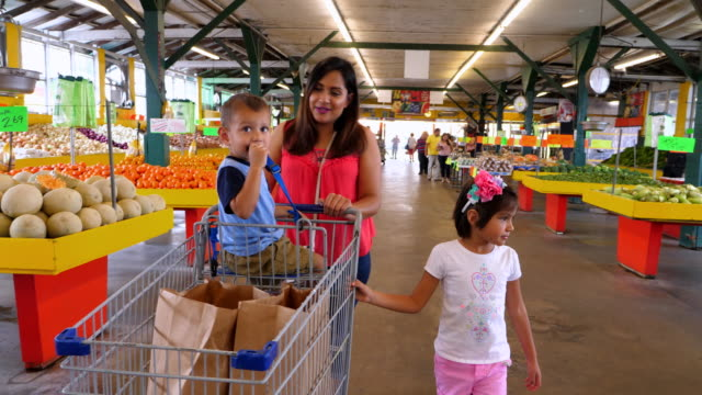 ms ts smiling family shopping together in produce market - familie mit zwei kindern stock-videos und b-roll-filmmaterial