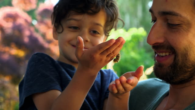 vidéos et rushes de ms smiling father and young son holding caterpillar in backyard - famille monoparentale