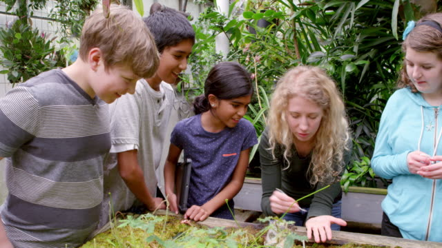 ms smiling female botanist lauging with group of young students showing them worms in research greenhouse. - botanist stock videos & royalty-free footage