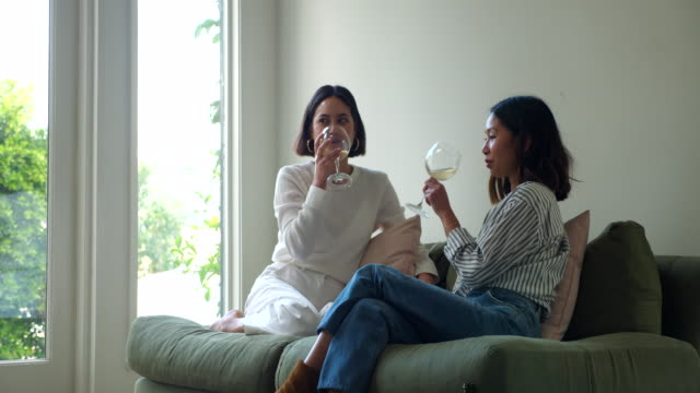 ms smiling female friends relaxing in living room sharing wine - cross legged stock videos & royalty-free footage
