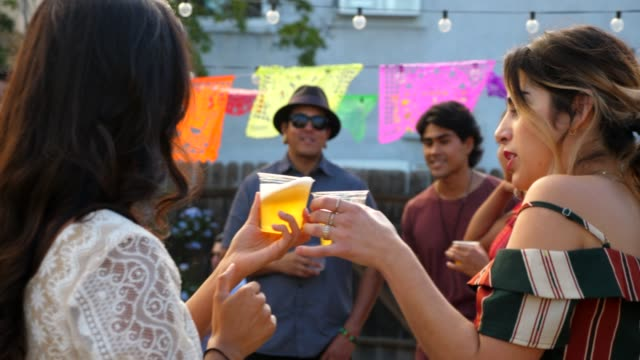 ts smiling female friends toasting while hanging out at backyard party - drinking stock videos & royalty-free footage