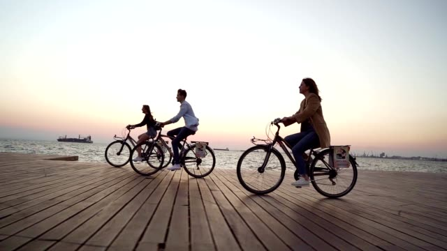 vídeos de stock e filmes b-roll de smiling friends cycling by the sea - bicicleta
