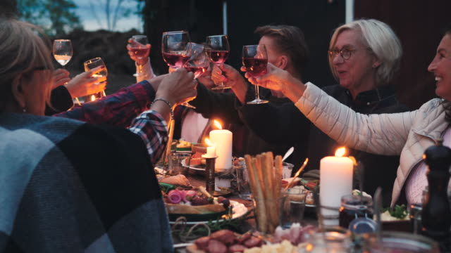 vídeos de stock, filmes e b-roll de smiling friends toasting wineglasses while sitting at dining table during harvest dinner party at backyard - public celebratory event