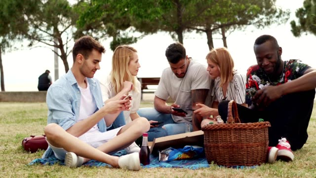 ピクニックで携帯電話を使用して笑顔の友人 - public park点の映像素材/bロール