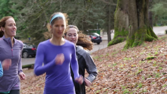 ms smiling group of female runners running up trail in park - small group of people stock videos & royalty-free footage
