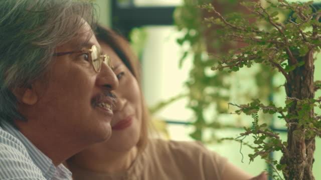vídeos de stock, filmes e b-roll de pares sênior de sorriso no jardim - planta de vaso