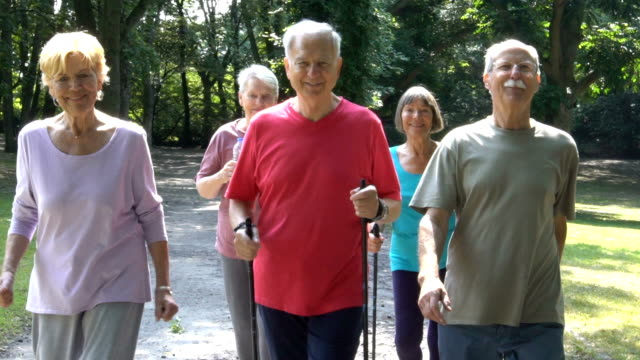 smiling senior friends holding hiking poles while walking in park - five people stock videos & royalty-free footage