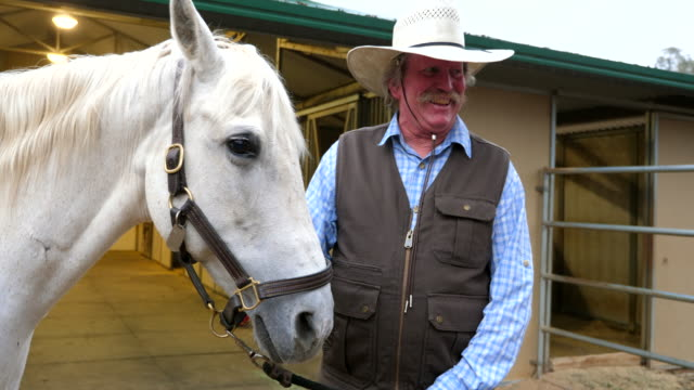 ms smiling senior man admiring horse before early morning ride - cowboy hat stock videos & royalty-free footage