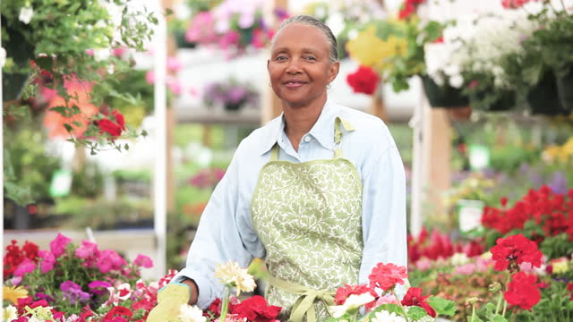 smiling senior woman stocking flowers in garden center and looking up at camera - garden center stock videos and b-roll footage