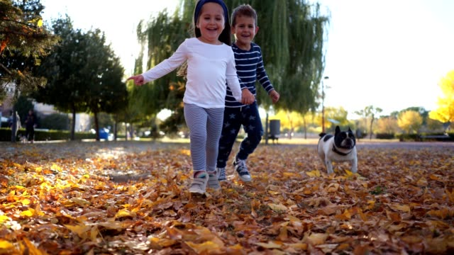 smiling siblings running with their dog while holding hands - family with two children stock videos & royalty-free footage