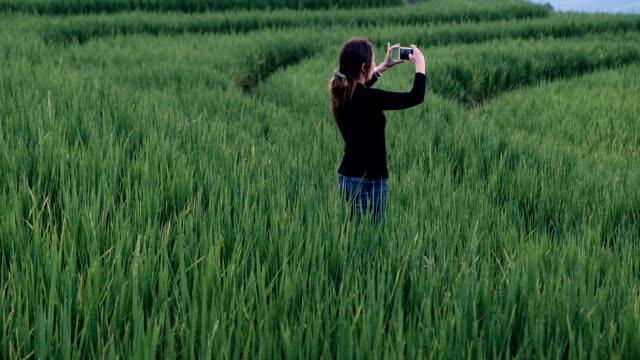 vídeos de stock e filmes b-roll de smiling tourist taking selfie with smartphone - explorador