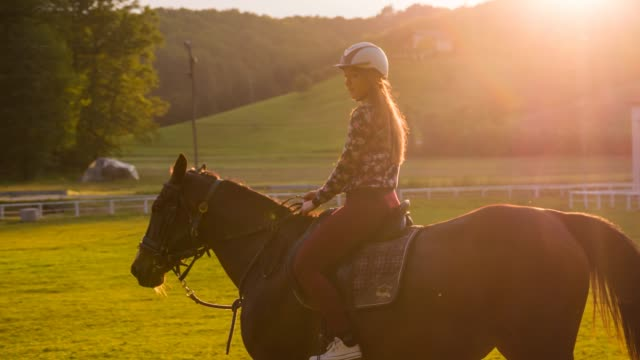 smiling woman riding a horse - recreational horse riding stock videos and b-roll footage