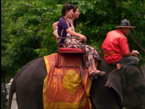 vidéos et rushes de pan 2 smiling women riding on elephant on street / thailand - animaux au travail