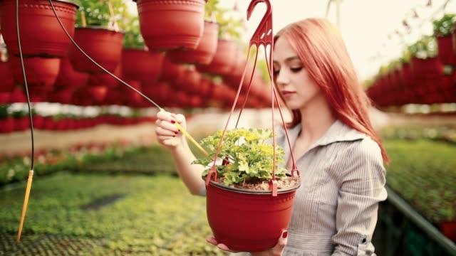若い庭師の笑顔 - 鉢植え点の映像素材/bロール