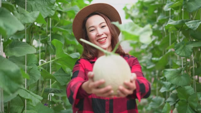 Smiling young woman giving the ripe muskmelon toward the camera