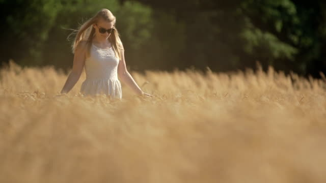 smiling young woman walking on wheat field - sundress stock videos & royalty-free footage